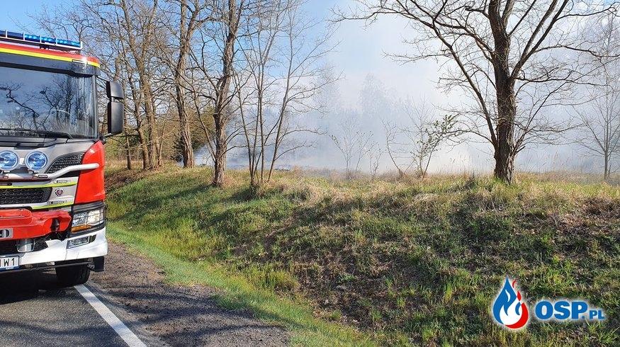 Pożar traw przy Drodze Krajowej nr.26 OSP Ochotnicza Straż Pożarna