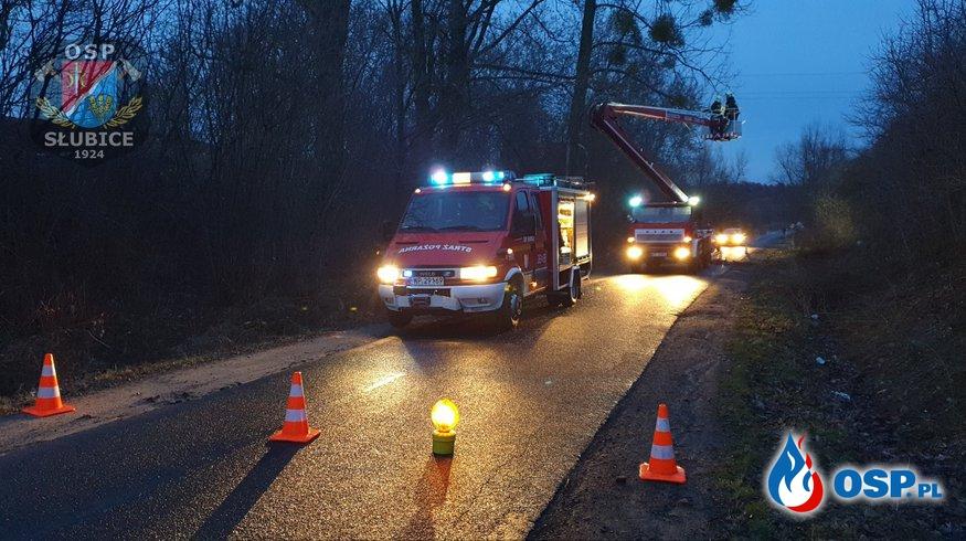 Po wichurze złamana gałąź zawisła nad drogą OSP Ochotnicza Straż Pożarna