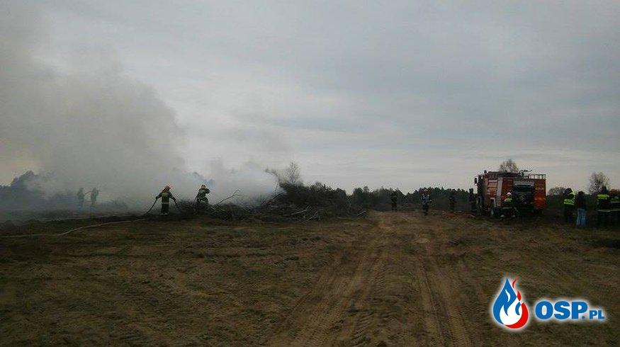 Ćwiczenia z zakresu współdziałania przy pożarach lasów- Budowo- 10.04.2016 OSP Ochotnicza Straż Pożarna