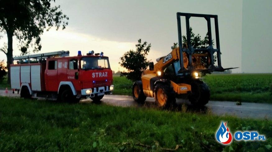 #07/2020 Powalone drzewo na drodze Wojewódzkiej 458 OSP Ochotnicza Straż Pożarna