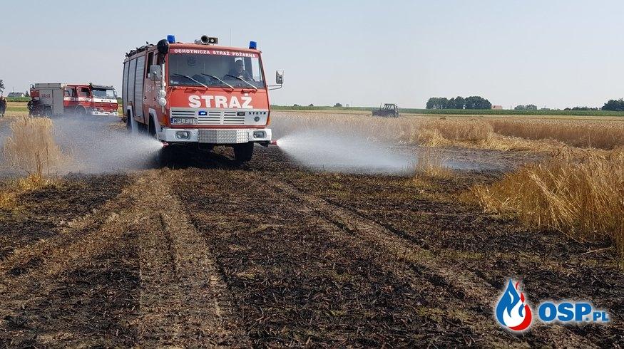 Pożar ścierniska oraz zboża na pniu w miejscowości Wyszyna, gm. Stara Biała OSP Ochotnicza Straż Pożarna