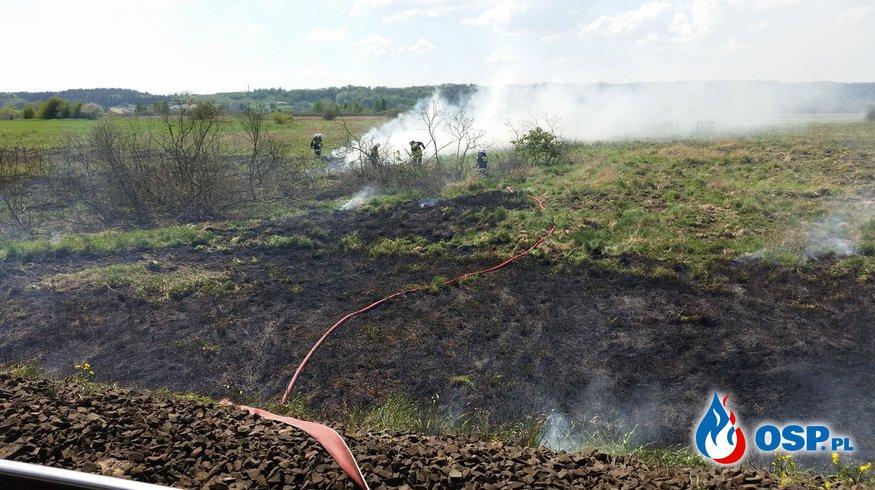 Kolejny pożar nasypu kolejowego! OSP Ochotnicza Straż Pożarna