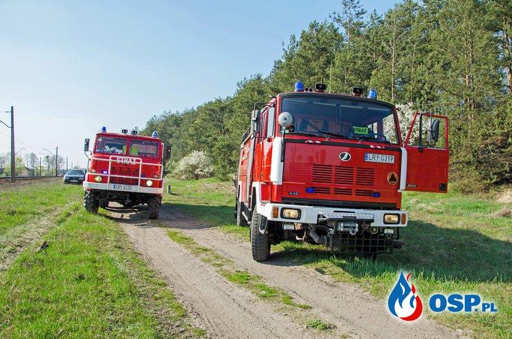 Pożar trawy i poszycia leśnego OSP Ochotnicza Straż Pożarna