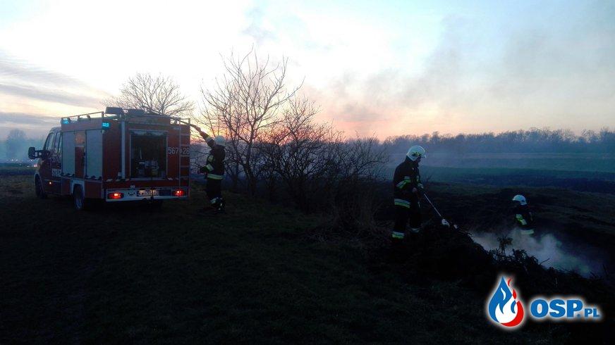 Niecodzienny pożar traw OSP Ochotnicza Straż Pożarna