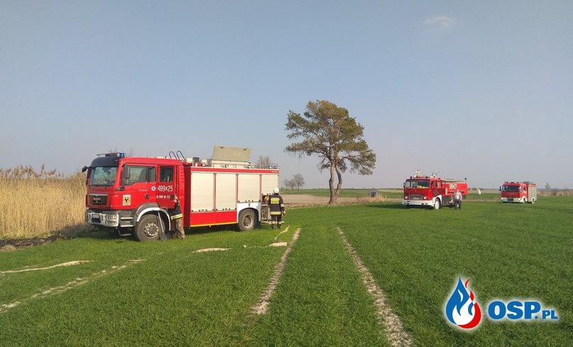 Pożar trzcinowiska w Procyniu OSP Ochotnicza Straż Pożarna