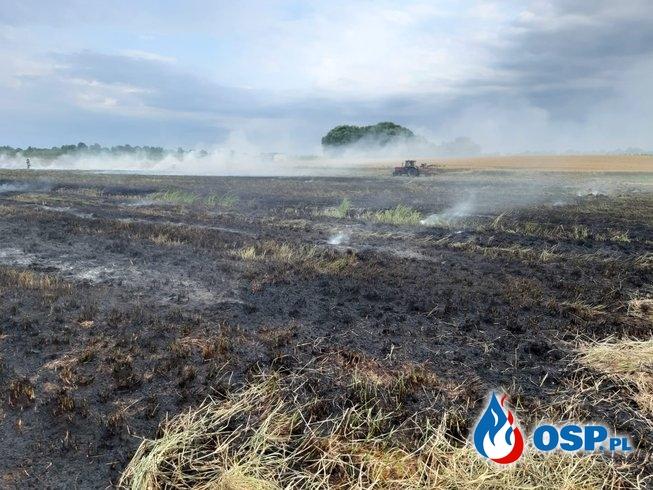Pożar siana w Lewicach OSP Ochotnicza Straż Pożarna