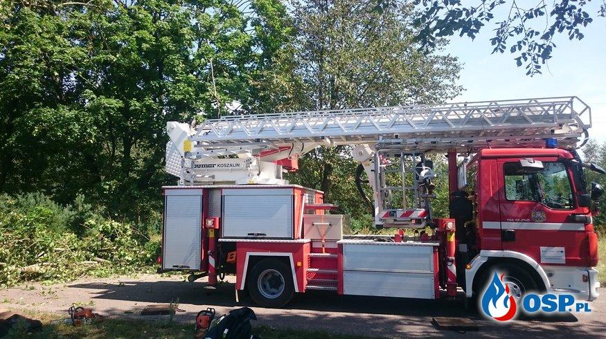 Usuwanie skutków burzy OSP Ochotnicza Straż Pożarna