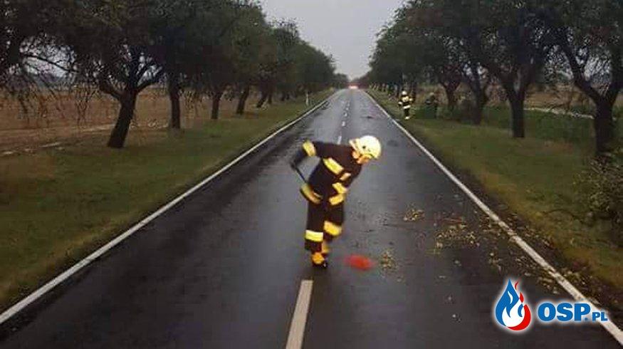Pracowity weekend naszych strażaków OSP Ochotnicza Straż Pożarna