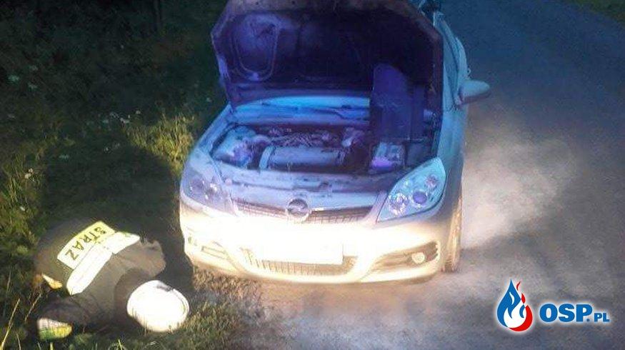 Płonący samochód, trawa i powalone drzewa - 3 akcje w ciągu dnia OSP Ochotnicza Straż Pożarna