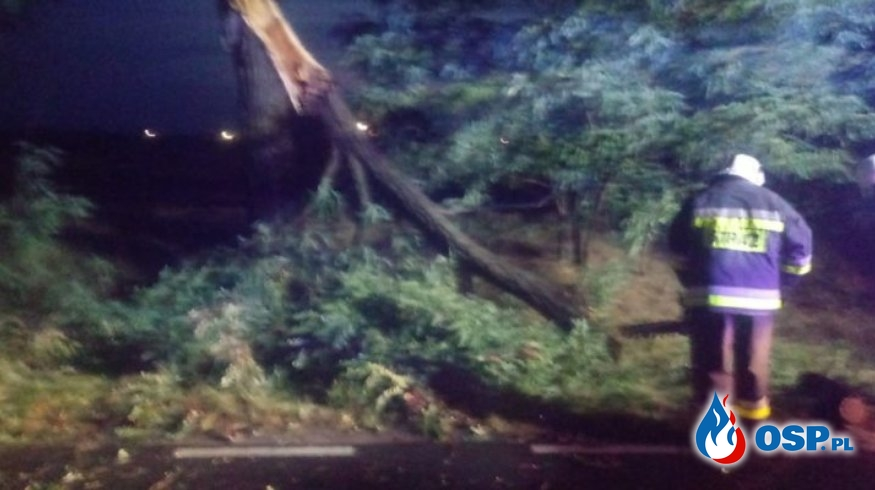 Silny wiatr i gwałtowne opady deszczu OSP Ochotnicza Straż Pożarna