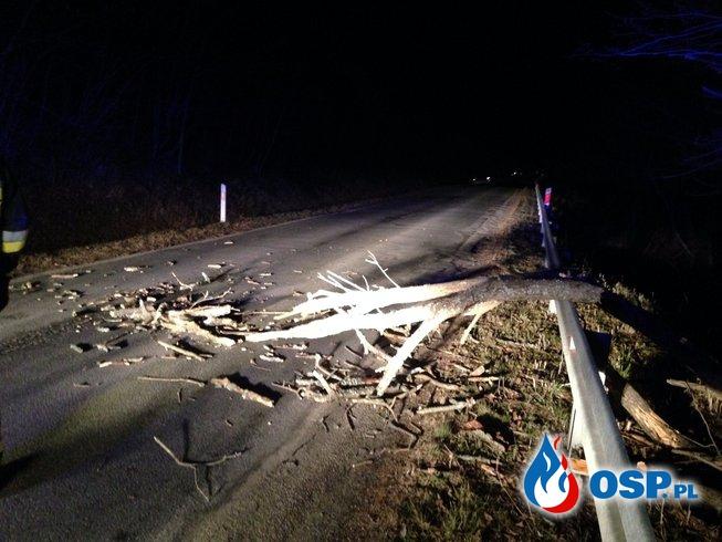 Powalone drzewa - halny daje się we znaki w Bieszczadach OSP Ochotnicza Straż Pożarna