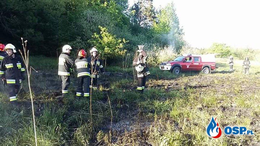 Pożar trawy w Krzywaczce OSP Ochotnicza Straż Pożarna