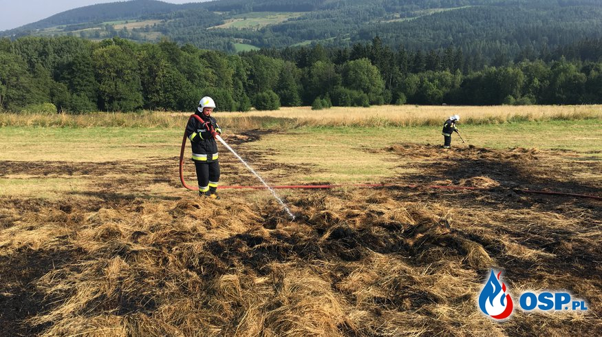 Dziwiszów: Kolejny pożar bel siana. OSP Ochotnicza Straż Pożarna