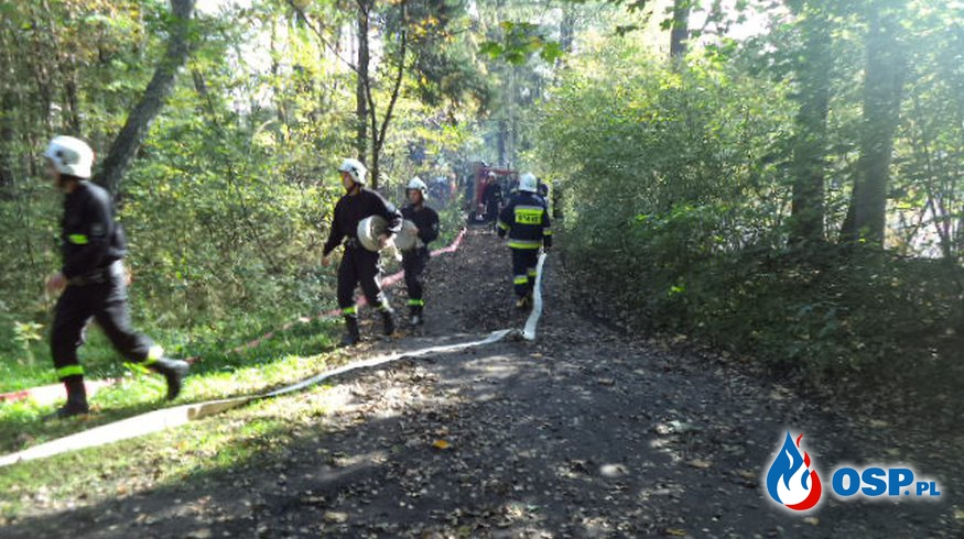 Szkolenie podstawowe. OSP Ochotnicza Straż Pożarna