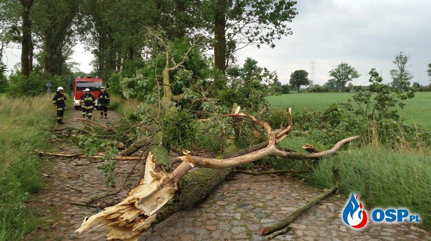 Usuwanie zalegających gałęzi na drodze! OSP Ochotnicza Straż Pożarna