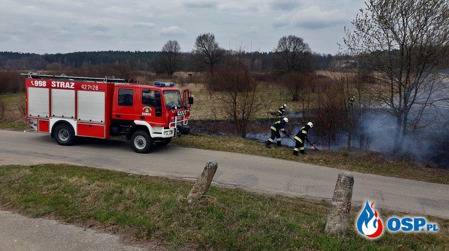Pożar nieużytków - ul. Łąkowa w Rozkochowie OSP Ochotnicza Straż Pożarna