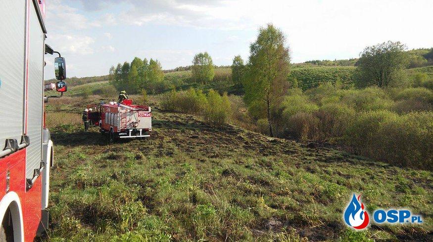 Pożar traw w Klonowie 5.05.2016 OSP Ochotnicza Straż Pożarna