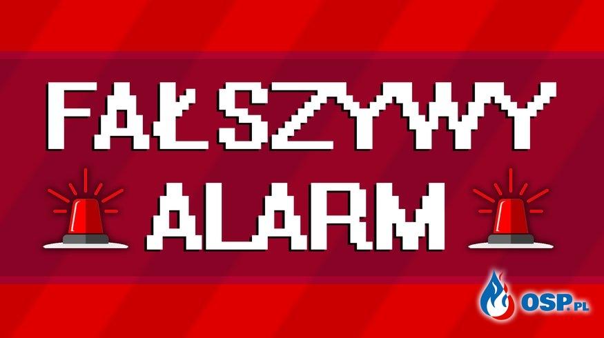 166/2019 Zadymienie budynku - Fałszywy Alarm OSP Ochotnicza Straż Pożarna
