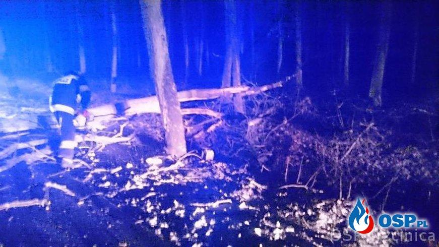 Przewrócone drzewo OSP Ochotnicza Straż Pożarna