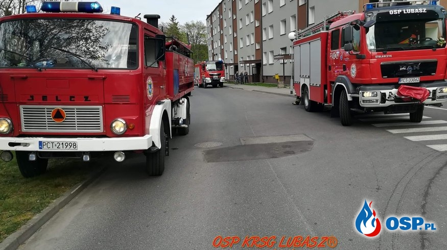 Załączenie czujki tlenku węgla w mieszkaniu oraz pożar trawy i krzewów ogrodowych OSP Ochotnicza Straż Pożarna