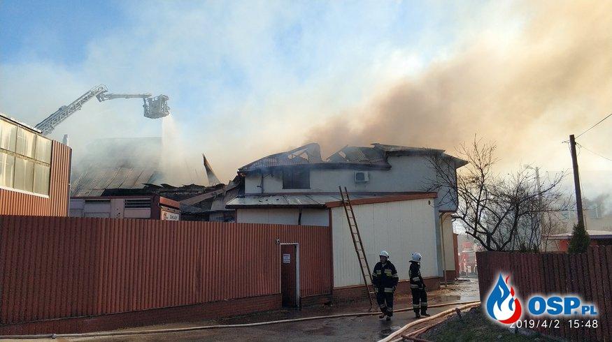 Strażacy 7 godzin walczyli z pożarem ubojni we Włodawie OSP Ochotnicza Straż Pożarna