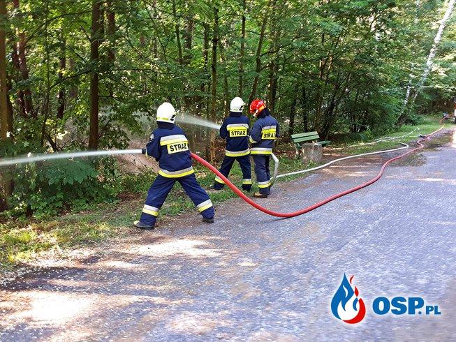 Ćwiczenia w Słupcy z przetłaczania wody na znaczne odległości OSP Ochotnicza Straż Pożarna