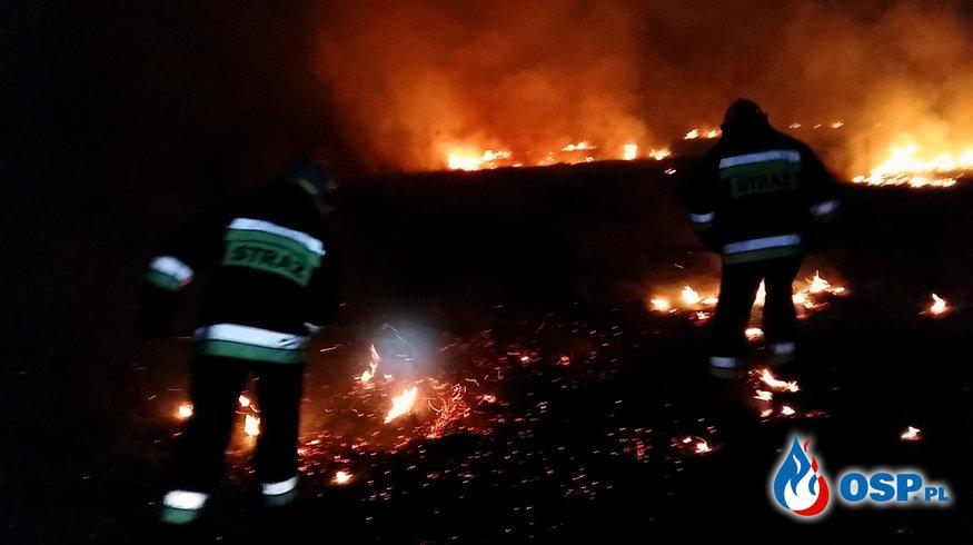 Pożar trawy w Biertowicach. OSP Ochotnicza Straż Pożarna