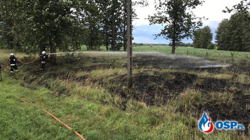 Pożar trawy w Glinojecku OSP Ochotnicza Straż Pożarna