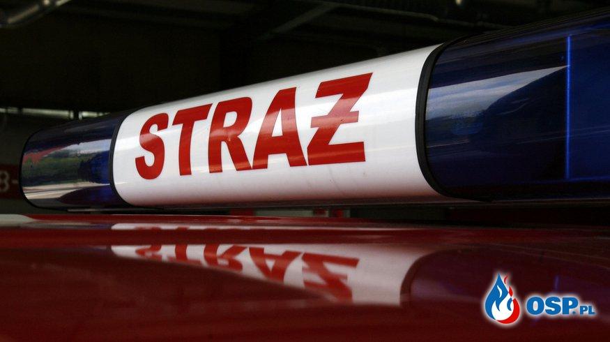 Pożar traw - Opalenie  OSP Ochotnicza Straż Pożarna