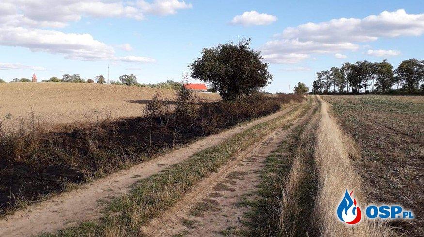 Pożar trawy między Żelichowem a Klępiczem OSP Ochotnicza Straż Pożarna