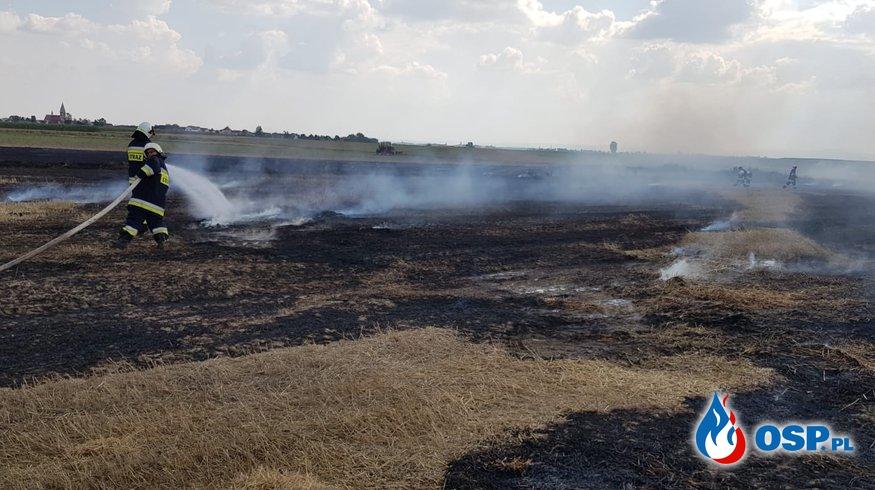 Pożar ścierniska i słomy w Ligocie Bialskiej  OSP Ochotnicza Straż Pożarna