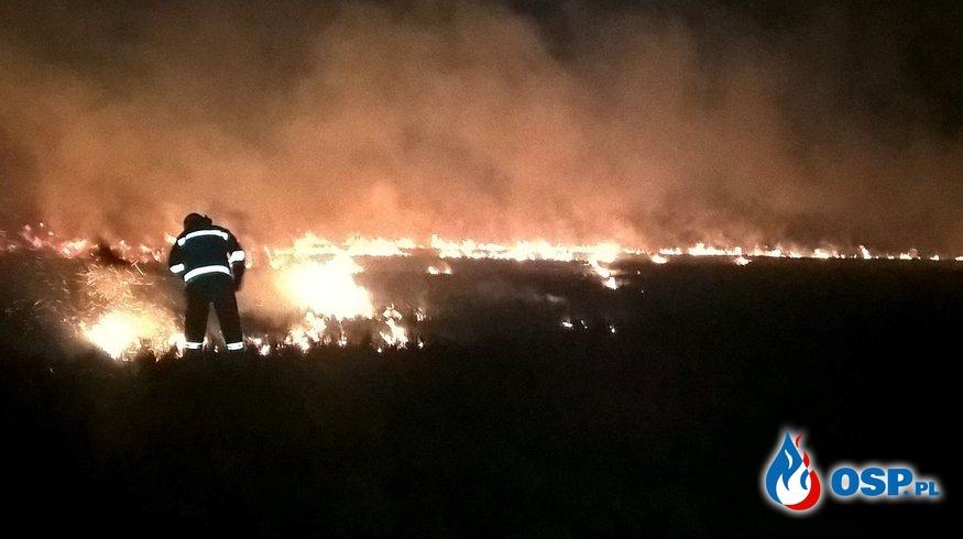 Pożar traw w Żeglcach OSP Ochotnicza Straż Pożarna