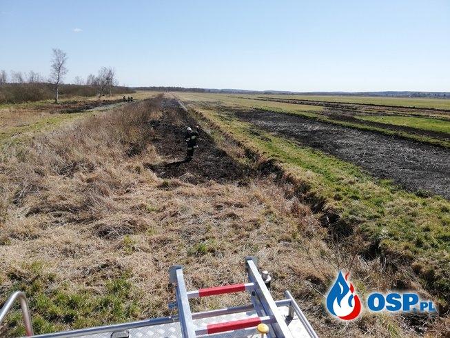 [7P/2020] Pożar łąk między Morzewem a Prawomyślem OSP Ochotnicza Straż Pożarna