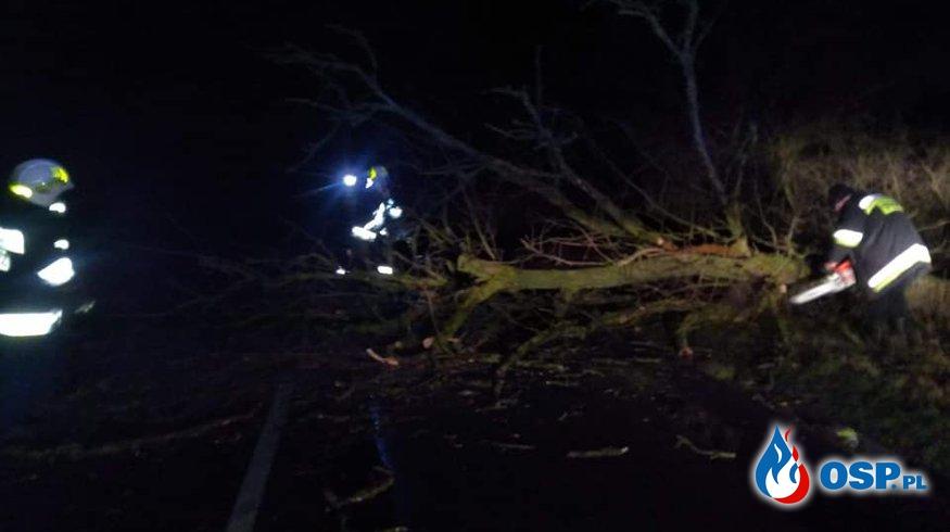 Przewrócone drzewo w miejscowości Makowiec! OSP Ochotnicza Straż Pożarna