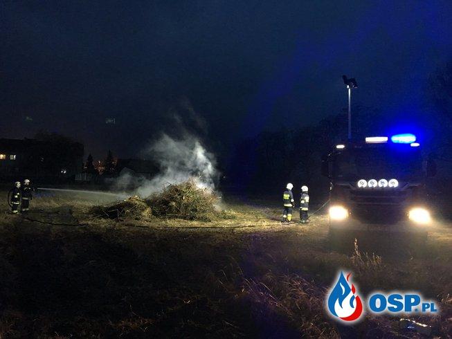Pożar gałęzi OSP Ochotnicza Straż Pożarna