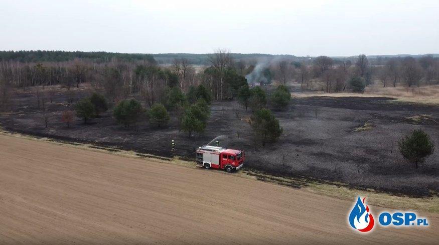 Pożar nieużytków (widok z lotu ptaka) OSP Ochotnicza Straż Pożarna