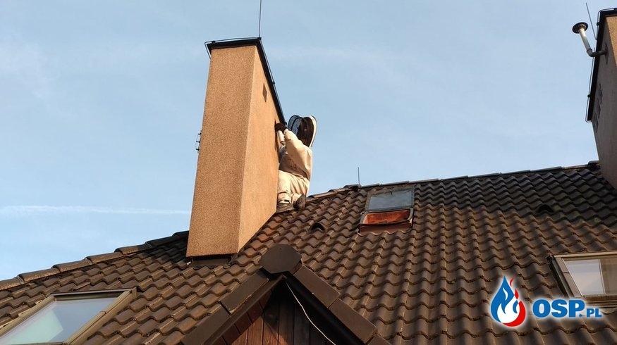 Usuwanie gniazda owadów - 6 września 2019r. OSP Ochotnicza Straż Pożarna