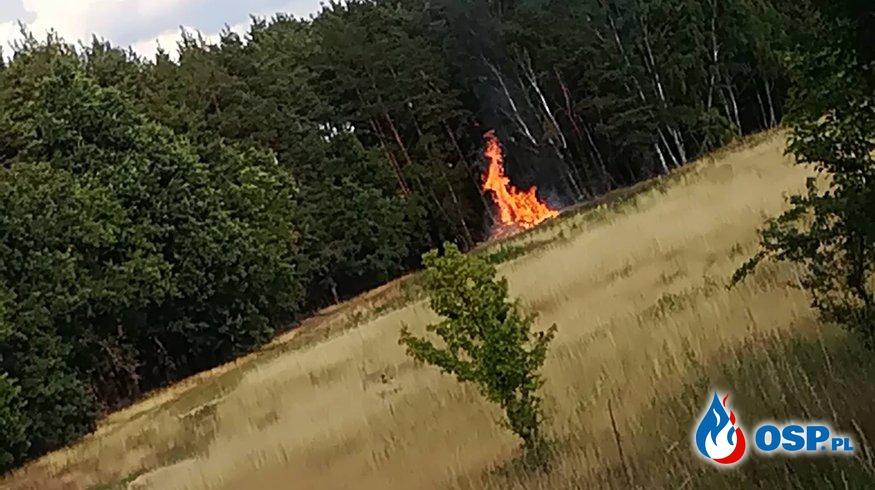 Pożar stert drewna- Struga - Łochowice 27.06.2018 OSP Ochotnicza Straż Pożarna