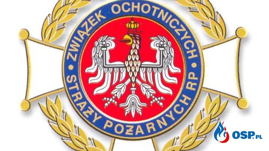 Uciążliwe gniazdo OSP Ochotnicza Straż Pożarna