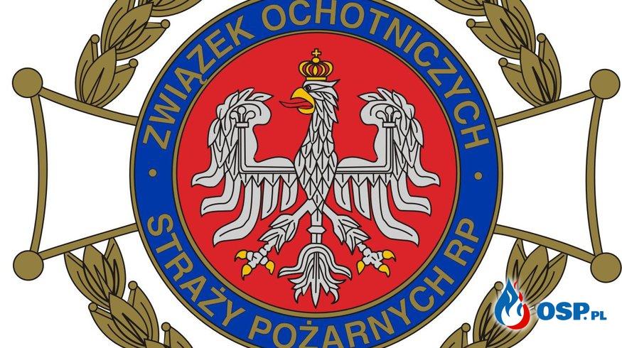 Zebranie Sprawozdawczo-Wyborcze (2016) OSP Ochotnicza Straż Pożarna