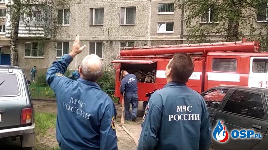 Skandaliczna akcja strażaków w Rosji. Prądem wody w kota na drzewie! OSP Ochotnicza Straż Pożarna