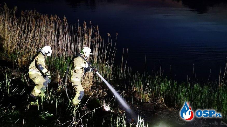Pożar trzcinowiska na nabrzeżu w Ognicy OSP Ochotnicza Straż Pożarna
