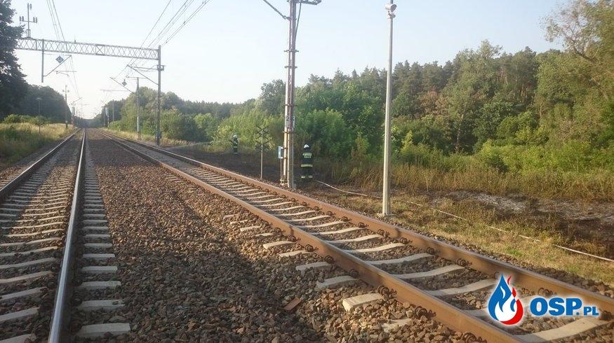 91/2019 Pożar trawy przy torach kolejowych OSP Ochotnicza Straż Pożarna