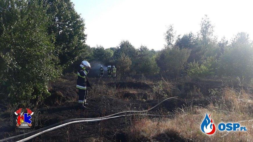 Pożar trawy i drzew na poligonie w Górkach OSP Ochotnicza Straż Pożarna