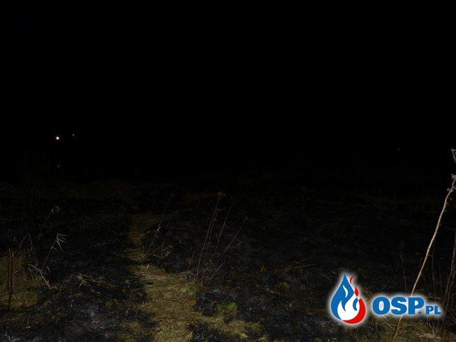 2/16 pożar nieużytków OSP Ochotnicza Straż Pożarna