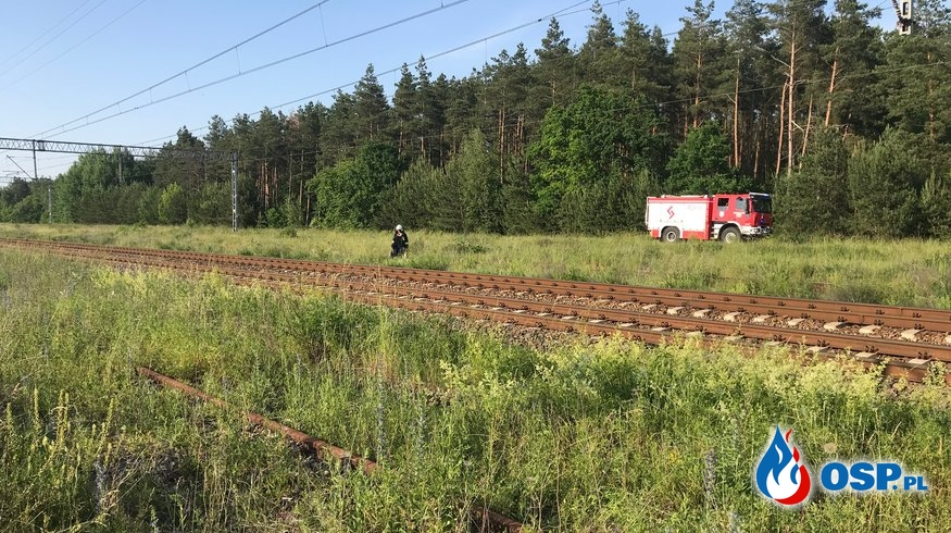 78/2019 Pożar trawy przy torach kolejowych OSP Ochotnicza Straż Pożarna