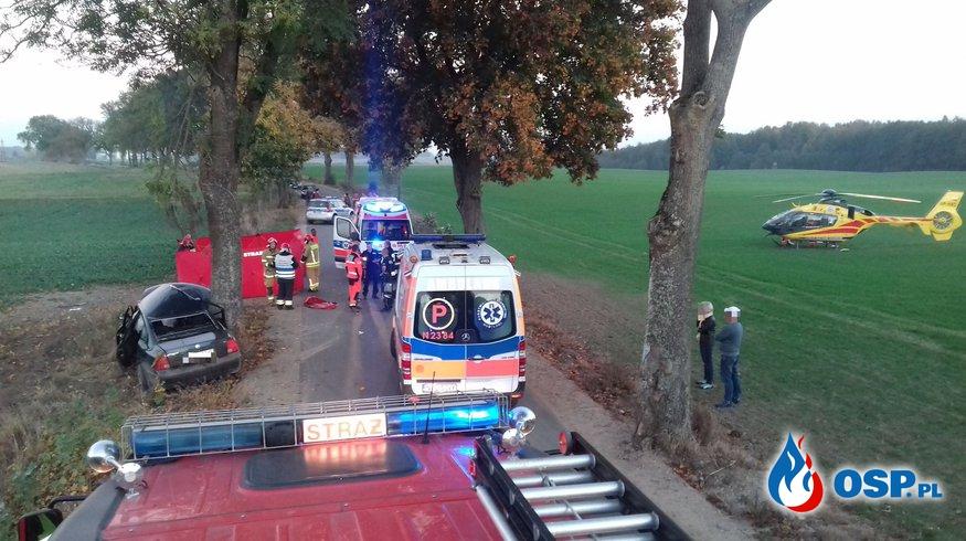 Passat rozbił się na drzewie. W akcji LPR. Dwóch mężczyzn nie udało się uratować. OSP Ochotnicza Straż Pożarna