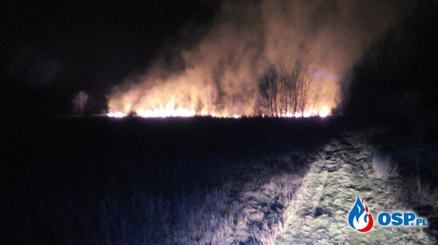 Pożar suchych traw w Bóbrce przy ul. Podkarpackiej OSP Ochotnicza Straż Pożarna