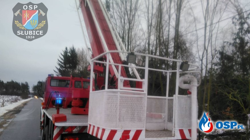 Drzewo pochylone nad linię i drogę OSP Ochotnicza Straż Pożarna