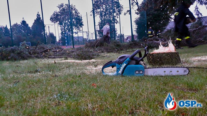 Wycinka drzew przy Szkole Podstawowej w Babicach OSP Ochotnicza Straż Pożarna